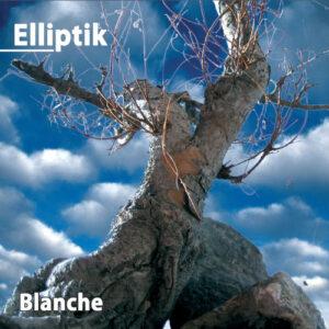 Read more about the article Elliptik